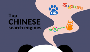 top chinese search engines